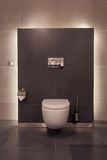 Woodland hotel - Toilet Royalty Free Stock Image