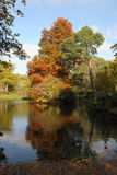 Woodland Lake In The Fall Stock Photography