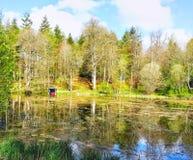 Woodland lake Stock Images