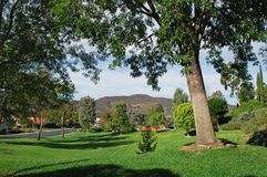 Woodland park in Laguna Woods Retirement Community. One of many small. woodland parks within the premier retirement community of Laguna Woods, Southern royalty free stock photo