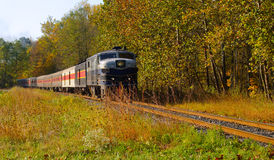 Woodland passenger train Royalty Free Stock Photo