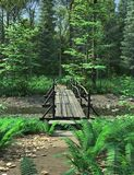Woodland Path and Bridge Royalty Free Stock Images