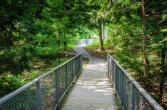 Woodland Path - The Clark - Williamstown, MA Royalty Free Stock Photo