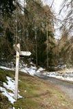 Woodland Path. Royalty Free Stock Photography