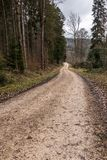 Woodland path in the middle of the forest. Woodland path in the middle of the winter forest Stock Photo