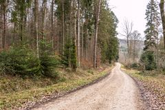 Woodland path in the middle of the forest. Woodland path in the middle of the winter forest Royalty Free Stock Photo