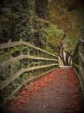 Woodland trail leading over a wooden bridge. Woodland path trail leading over a wooden bridge Stock Image