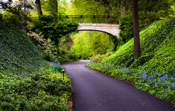 Woodland path under a bridge at Longwood Gardens, PA Stock Image
