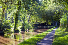Woodland pathway along English canal on hot summer day Royalty Free Stock Image