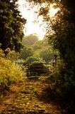 Woodland Pathways. Woodland Pathway leading to farmers gate and sign Stock Photography