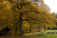 Woodland picnic area at fall. An empty picnic area on a wet day in fall at a forest in the Swabian Alb, Germany Stock Images