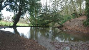 Woodland pool lake from river Stock Photo