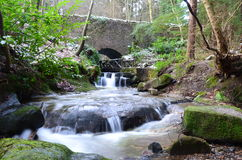Woodland River Royalty Free Stock Photos