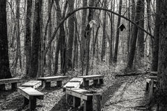 Woodland Schoolroom in the Afternoon. Black and White picture of a classroom type set up in the woods of Green Mountain, Alabama Stock Photography