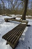 Woodland Seat in Snow. Charterhouse, Mendip Hills Royalty Free Stock Image