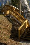 Woodland Stair Case Stock Image