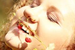 Woodland strawberry Royalty Free Stock Photography