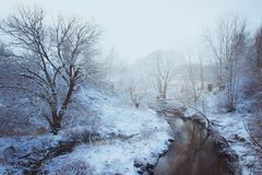 Woodland Stream Covered With Snow Stock Photo