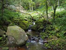 Woodland stream in hillside pennine forest with mossy rocks. Woodland stream in hillside pennine forest with moss covered boulders in west yorkshire england Royalty Free Stock Photo