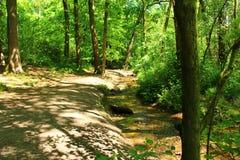 Woodland Stream. Stream running through the lower part of the woodland Stock Photo