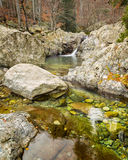 Woodland stream rushing intp crystal clear pool in Corsica Stock Image