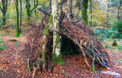 Woodland Survival Shelter Stock Images