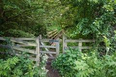 Woodland trail at Weldon Royalty Free Stock Photo