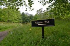 Woodland walk sign. Royalty Free Stock Image