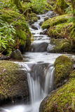 Woodland Waterfall Stock Photo