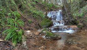 Woodland waterfall Royalty Free Stock Photography