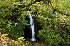 Woodland waterfall. Waterfall on the pathway leading up to tarn hows in Cumbria Royalty Free Stock Image