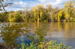 Woodlands in Autumn Along Minnesota River Stock Images