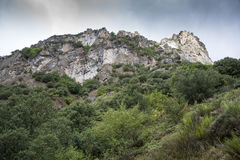 Woodlands in Somiedo Valley, Somiedo Nature Reserve Stock Images