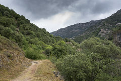 Woodlands in Somiedo Valley, Somiedo Nature Reserve Stock Photography