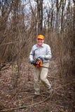 Woodman używa jego piłę łańcuchową ciie drzewa Zdjęcia Stock