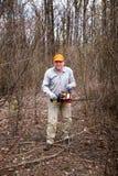 Woodman utilise sa tronçonneuse a coupé l'arbre photographie stock libre de droits