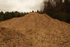Woodpil image libre de droits