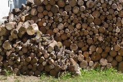 woodpile στην περιοχή μοναστηριών Στοκ φωτογραφία με δικαίωμα ελεύθερης χρήσης