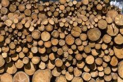 woodpile στην περιοχή μοναστηριών Στοκ εικόνες με δικαίωμα ελεύθερης χρήσης