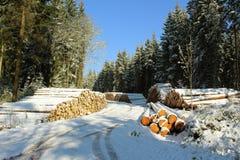 Woodpile в лесе зимы с снегом Стоковая Фотография