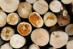 Woodpile - 01 Royalty Free Stock Photo