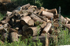 Woodpile. A pile of wood drying and ready to be split for firewood stock images