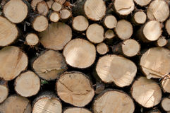 Woodpile Stock Foto's