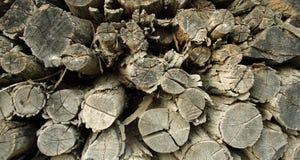 Woodpile Foto de archivo libre de regalías