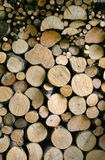 Woodpile. A woodpile for the winter Stock Photography