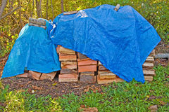Woodpile Stockfotos