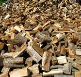 Woodpile Immagine Stock Libera da Diritti