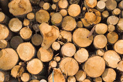 Woodpile. A photo of a woodpile in wintertime Stock Photos