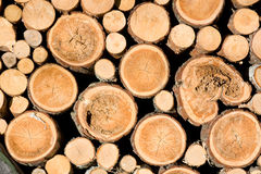 Woodpile Stockbild