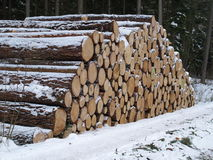 Woodpile Stockfotografie
